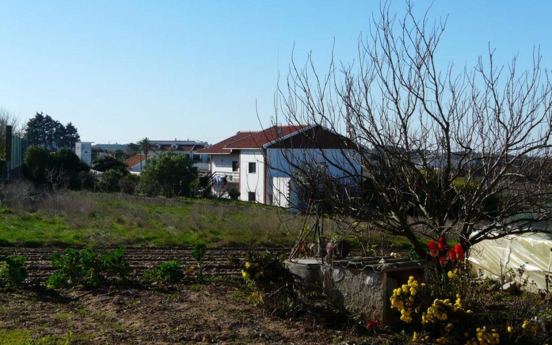 Lisboa/Oeste: Fundação João XXIII dinamiza semana das famílias centrada na arte