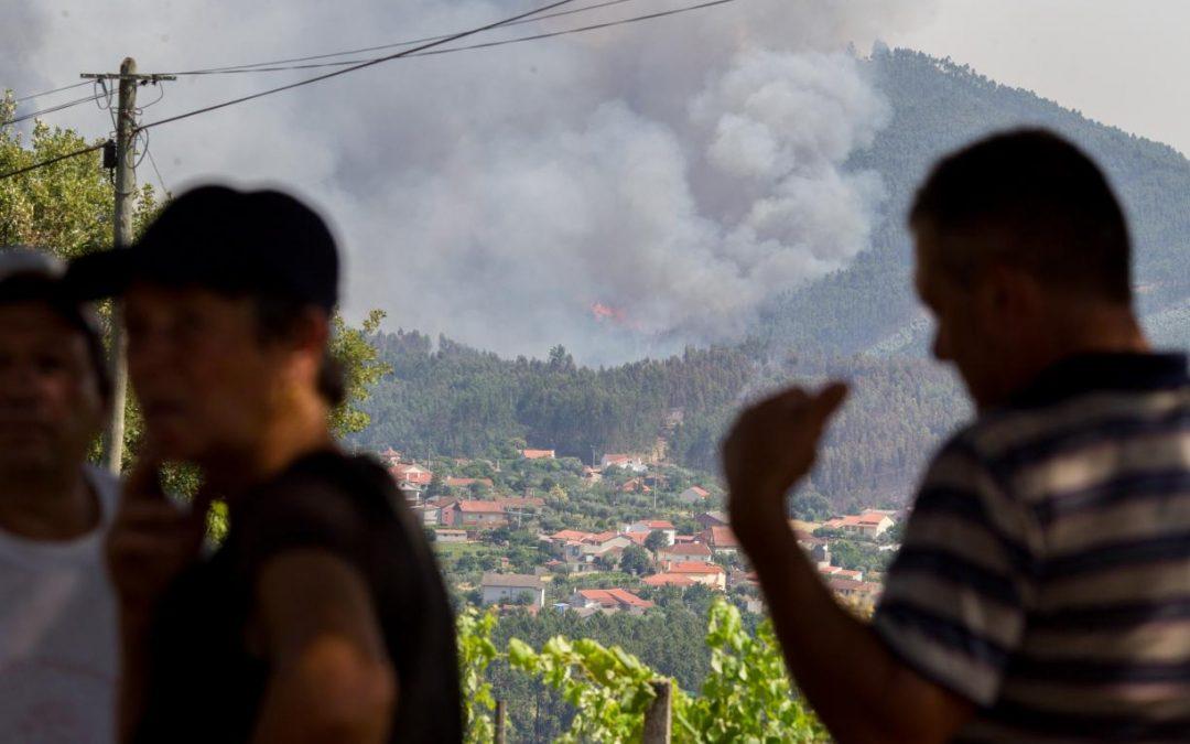 Incêndios: Cáritas anuncia resultados da campanha de junho de 2017 e agradece «confiança» dos portugueses