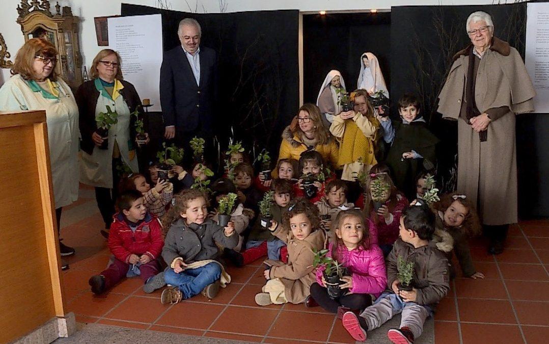 Incêndios/Crato: Crianças vão plantar árvores nas instalações da Misericórdia