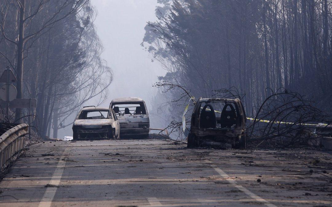 Portugal: Bispos da Europa visitam zona afetada pelos incêndios