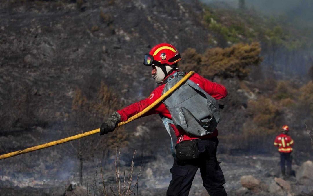 Guarda: Bispo destina renúncia às vítimas dos fogos florestais na diocese e a uma missão na Guiné-Bissau