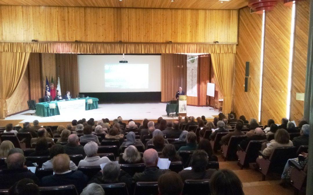 Portalegre-Castelo Branco: Bispo incentiva a organizar Pastoral Social em todas comunidades