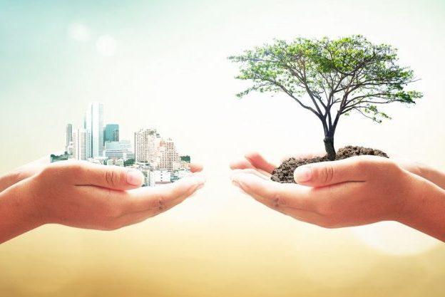 UCP/Lisboa: Ciclo sobre «A crise ambiental e ecológica – Olhares cruzados»