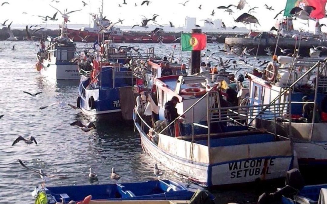 1.º de maio: Apostolado do Mar exige «maior dignidade» para os pescadores
