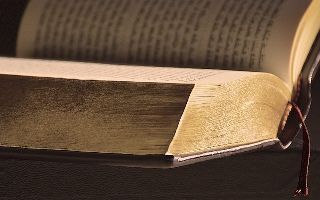 Lusofonia: Investigadores traduzem para português «sentimentos e experiências» da Bíblia