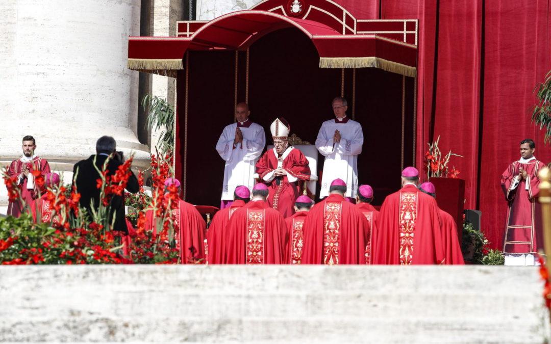 Vaticano: Papa alerta para «triunfalismos vazios» na Igreja Católica (c/vídeo)