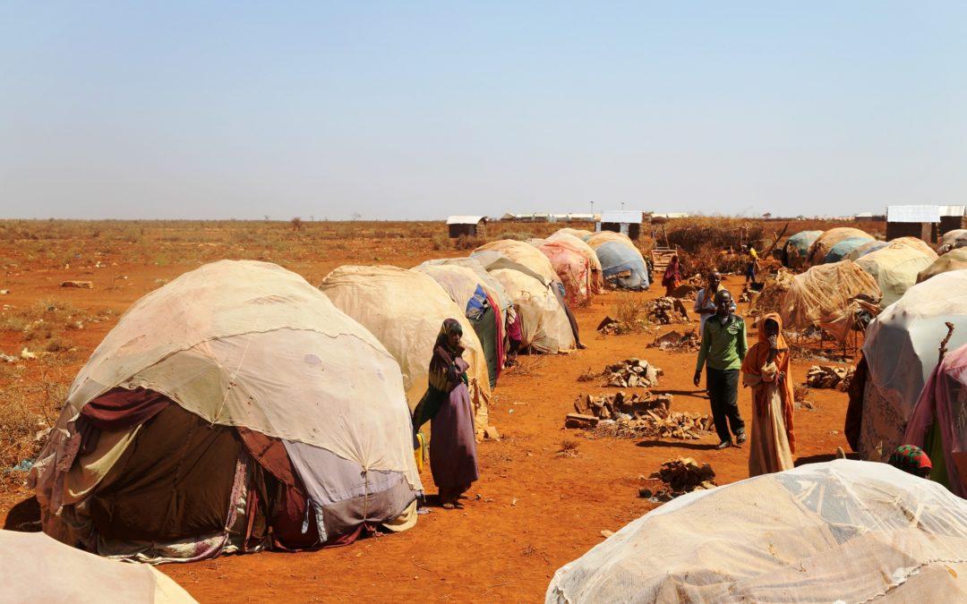 Igreja/Sociedade: Comissões Justiça e Paz defendem «abertura e generosidade» no acolhimento aos refugiados