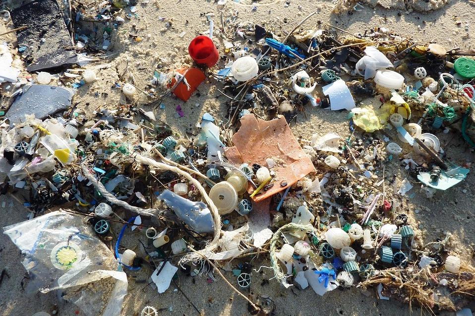 Igreja/Ambiente: Organismo do Vaticano diz «não» ao plástico