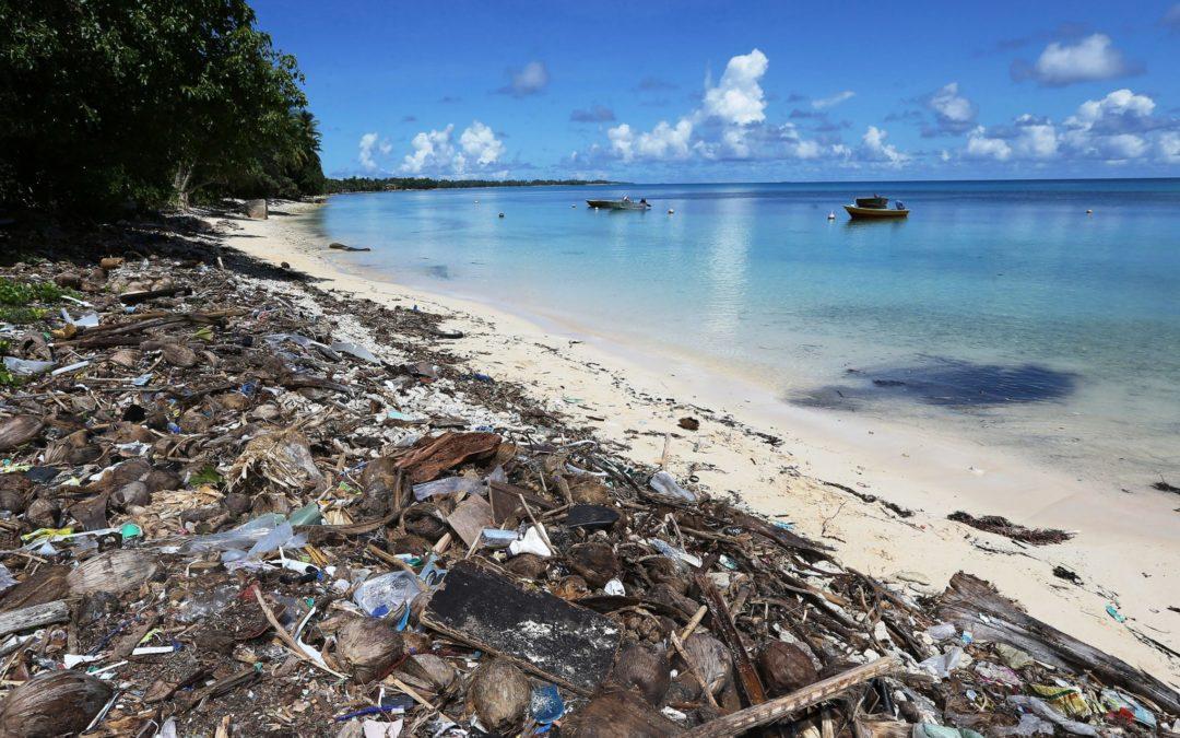 Igreja/Ambiente: Santa Sé promove simpósio para impulsionar rede ecológica global