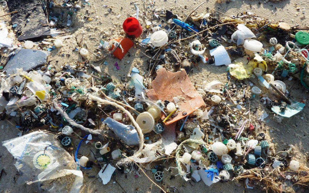 Vaticano: Papa denuncia «trabalho indigno» e poluição no Mar