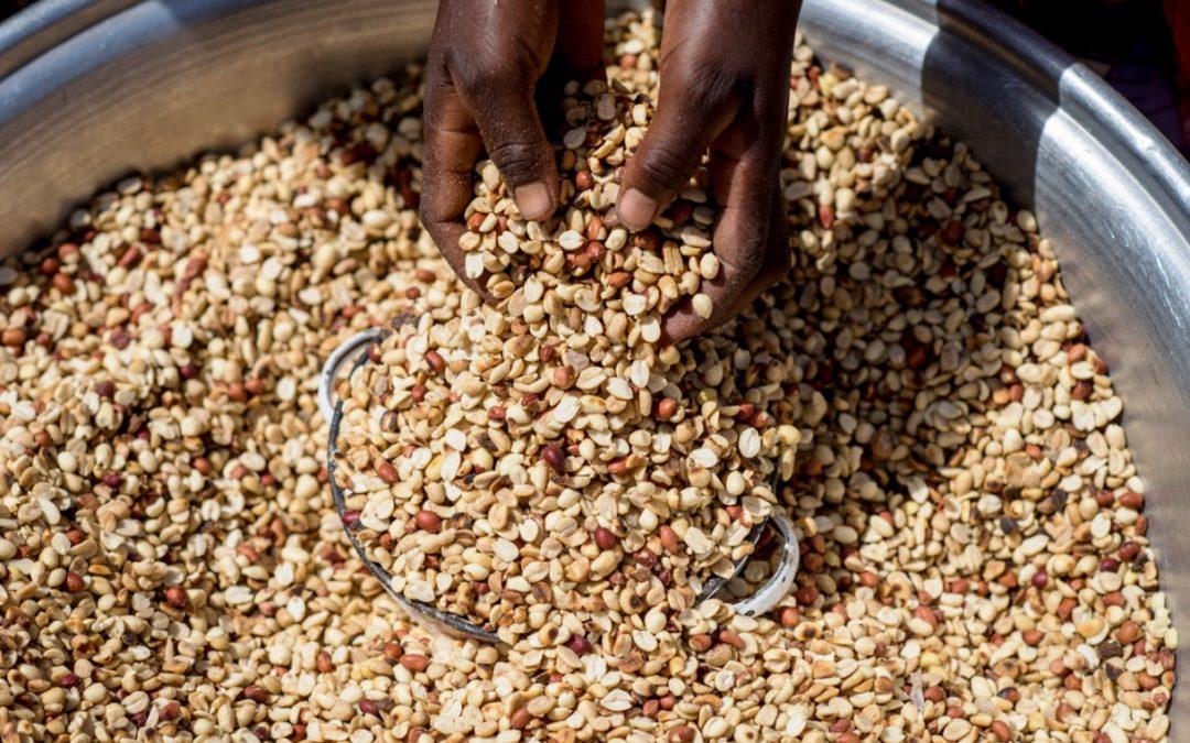 África: Cáritas Internacional alerta para crise alimentar que ameaça 6 milhões de pessoas no Sahel