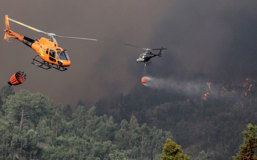 Incêndios: Santuário de Fátima vai doar 30 mil euros para vítimas dos fogos no Algarve