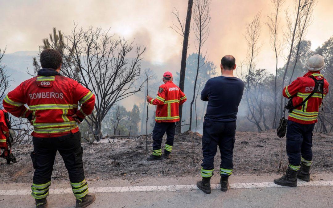 Algarve: Igreja Católica pronta para ajudar população afetada pelo incêndio em Monchique