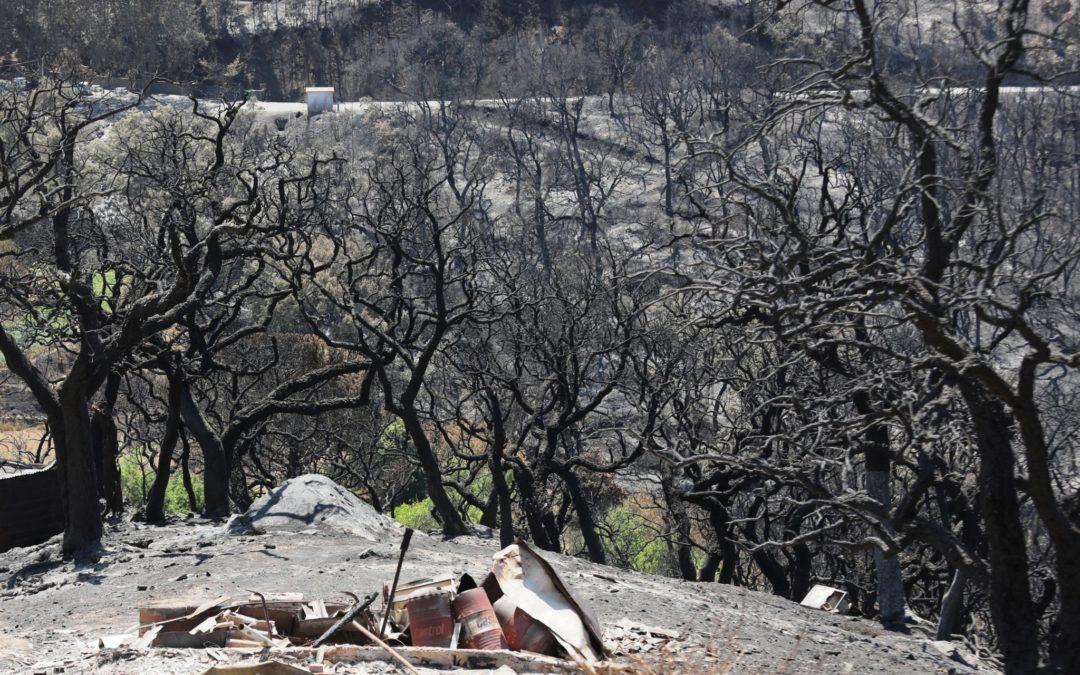 Incêndios: Diocese do Algarve recolhe donativos para vítimas dos fogos