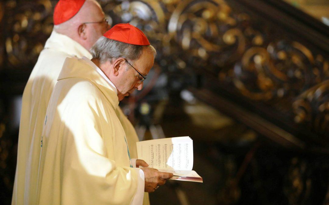 Abusos Sexuais: «Estamos completamente com o Papa», diz D. Manuel Clemente (C/áudio)