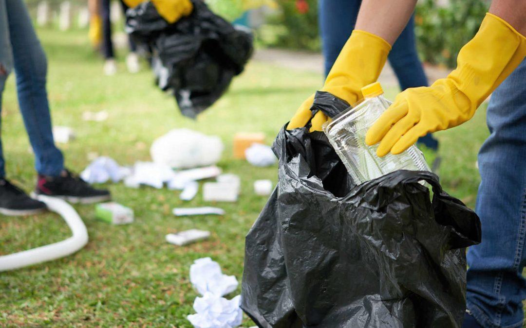 Oeste: Ação Católica Rural promove recolha de lixo «pelo cuidado da Casa Comum»