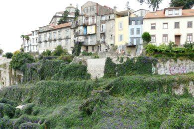 Porto: «Natal dos Sós» na Casa dos Girassóis