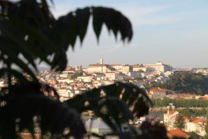 Coimbra: «Aproximai-vos do Senhor» no novo ano pastoral